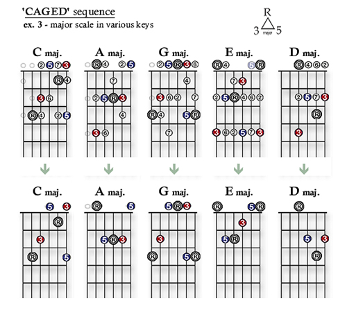 Lesson 1 (pt. 2) – chords and the CAGED sequence |